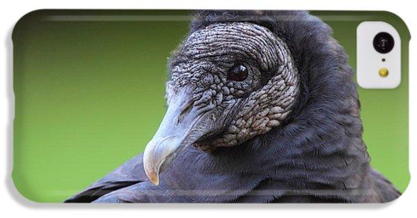 Black Vulture Portrait IPhone 5c Case by Bruce J Robinson