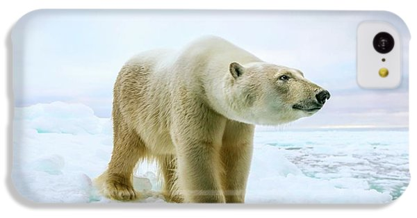 Close Up Of A Standing Polar Bear IPhone 5c Case by Peter J. Raymond