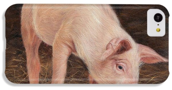 Pig IPhone 5c Case by David Stribbling