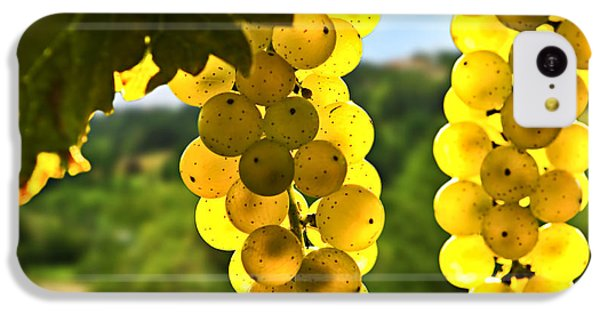 Yellow Grapes IPhone 5c Case by Elena Elisseeva