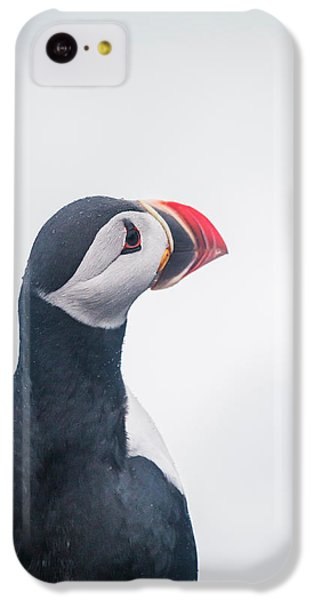 Atlantic Puffin Fratercula Arctica IPhone 5c Case by Panoramic Images