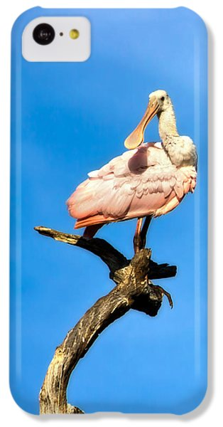 Roseate Spoonbill IPhone 5c Case by Mark Andrew Thomas