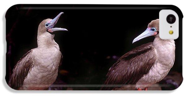South America, Ecuador, Galapagos IPhone 5c Case by Jaynes Gallery