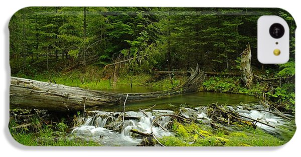 A Beaver Dam Overflowing IPhone 5c Case by Jeff Swan