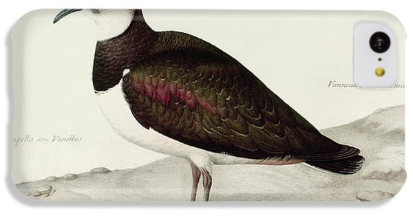 A Lapwing IPhone 5c Case by Nicolas Robert