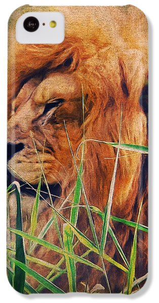 A Lion Portrait IPhone 5c Case by Angela Doelling AD DESIGN Photo and PhotoArt