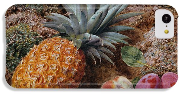 A Pineapple A Peach And Plums On A Mossy Bank IPhone 5c Case by John Sherrin