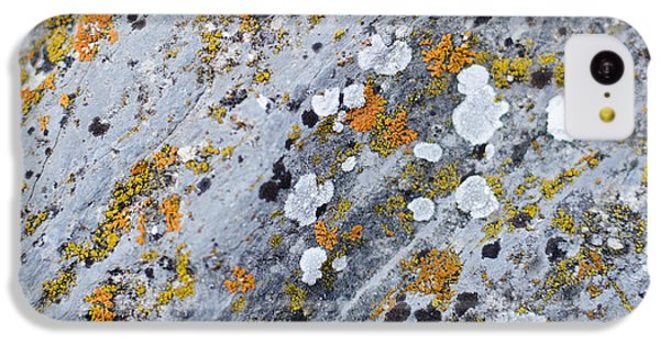 Abstract Orange Lichen 2 IPhone 5c Case by Chase Taylor