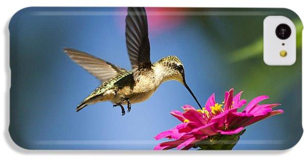Art Of Hummingbird Flight IPhone 5c Case by Christina Rollo