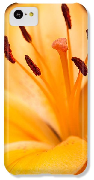 Asian Lily IPhone 5c Case by Sebastian Musial