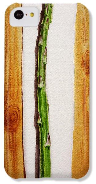 Asparagus Tasty Botanical Study IPhone 5c Case by Irina Sztukowski