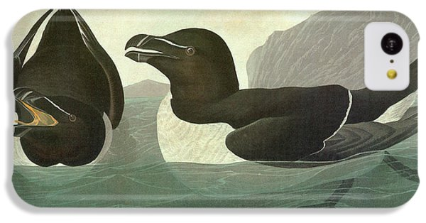 Audubon Razorbill IPhone 5c Case by Granger