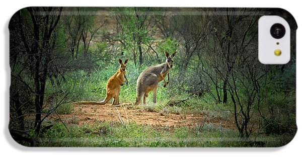 Australia, New South Wales, Broken IPhone 5c Case by Rona Schwarz