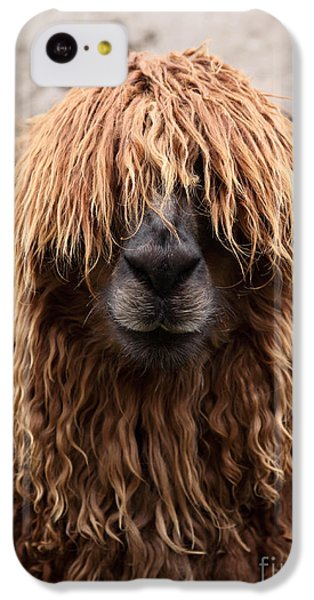 Bad Hair Day IPhone 5c Case by James Brunker