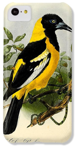 Baltimore Oriole IPhone 5c Case by J G Keulemans