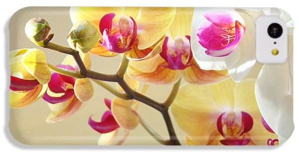 Beautiful Orchids Floral Art Prints Orchid Flowers IPhone 5c Case by Baslee Troutman