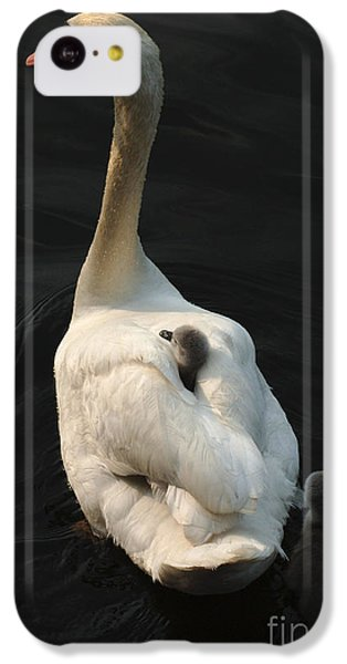 Birds Of A Feather Stick Together IPhone 5c Case by Bob Christopher