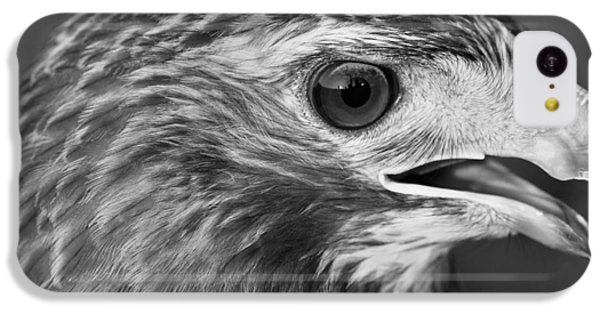 Black And White Hawk Portrait IPhone 5c Case by Dan Sproul