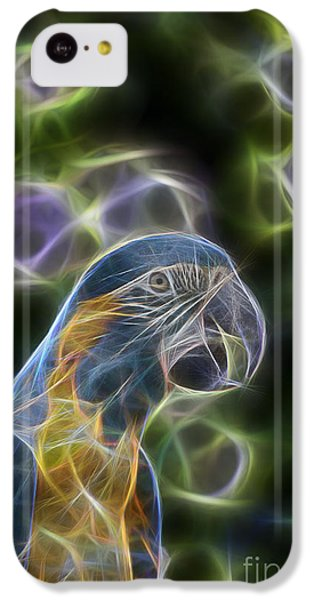 Blue And Gold Macaw  IPhone 5c Case by Douglas Barnard