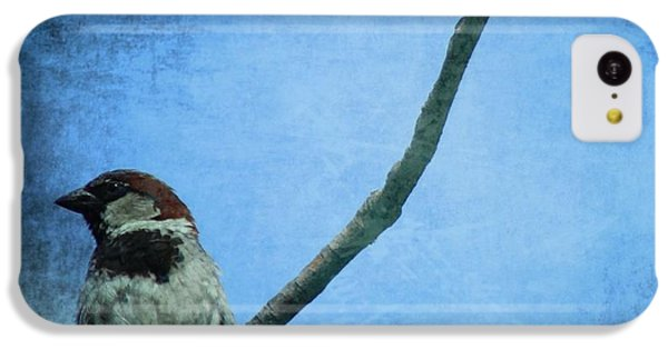 Sparrow On Blue IPhone 5c Case by Dan Sproul