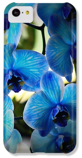 Blue Monday IPhone 5c Case by Mandy Shupp