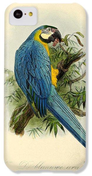 Blue Parrot IPhone 5c Case by J G Keulemans