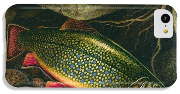 Brook Trout Lair IPhone 5c Case by JQ Licensing
