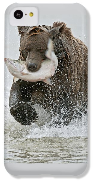 Brown Bear With Salmon Catch IPhone 5c Case by Gary Langley