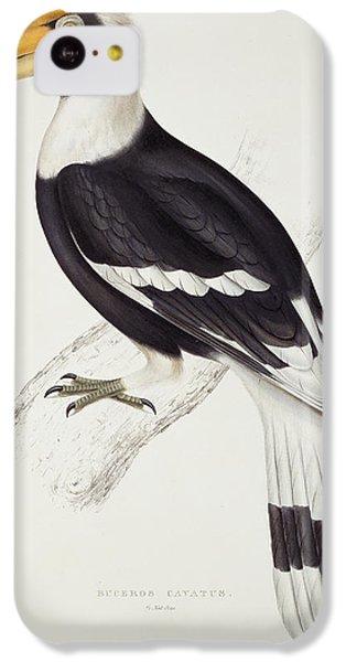 Great Hornbill IPhone 5c Case by John Gould