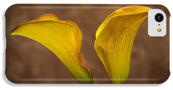 Calla Lilies IPhone 5c Case by Sebastian Musial