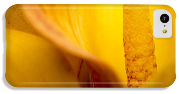 Calla Lily IPhone 5c Case by Sebastian Musial