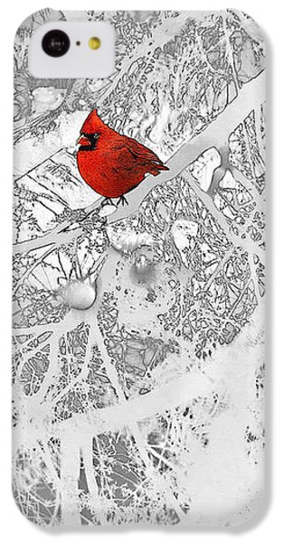 Cardinal In Winter IPhone 5c Case by Ellen Henneke