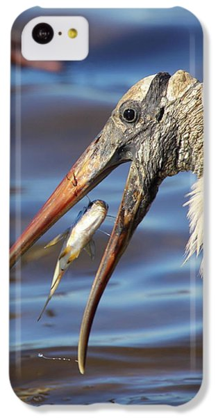 Catch Of The Day IPhone 5c Case by Bruce J Robinson