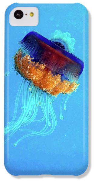 Cauliflower Jellyfish IPhone 5c Case by Louise Murray