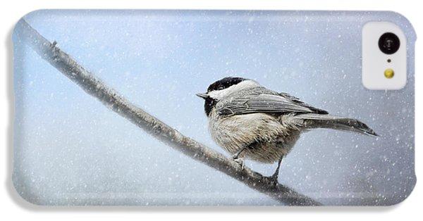 Chickadee In The Snow IPhone 5c Case by Jai Johnson