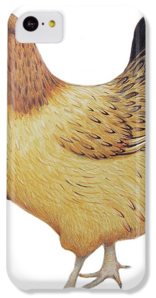 Chicken IPhone 5c Case by Ele Grafton