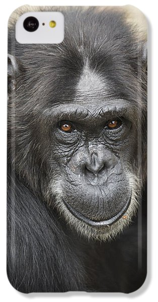 Chimpanzee Portrait Ol Pejeta IPhone 5c Case by Hiroya Minakuchi