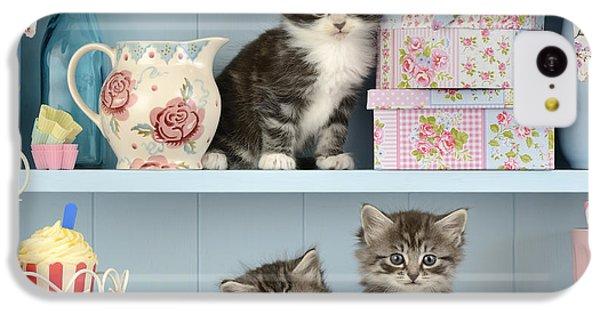 Baking Shelf Kittens IPhone 5c Case by Greg Cuddiford