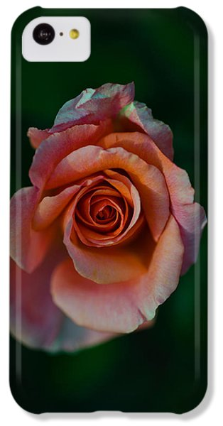 Close-up Of A Pink Rose, Beverly Hills IPhone 5c Case by Panoramic Images
