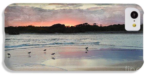 Coastal Beauty IPhone 5c Case by Betty LaRue