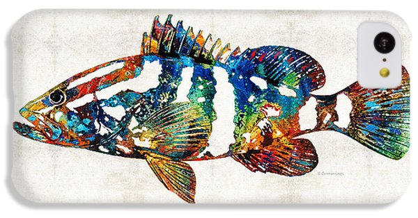 Colorful Grouper 2 Art Fish By Sharon Cummings IPhone 5c Case by Sharon Cummings