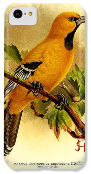 Curacao Oriole IPhone 5c Case by J G Keulemans