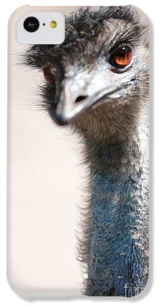 Curious Emu IPhone 5c Case by Carol Groenen