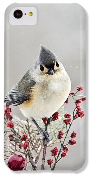 Cute Winter Bird - Tufted Titmouse IPhone 5c Case by Christina Rollo