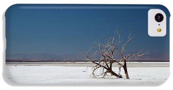 Dead Trees On Salt Flat IPhone 5c Case by Jim West