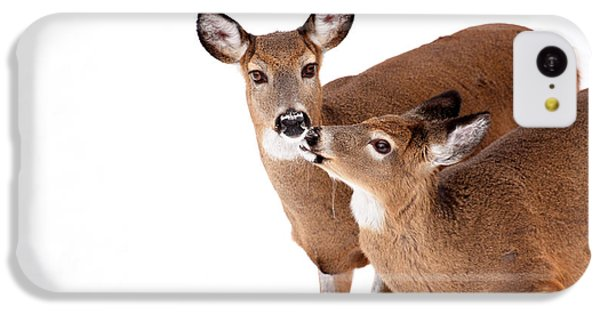 Deer Kisses IPhone 5c Case by Karol Livote