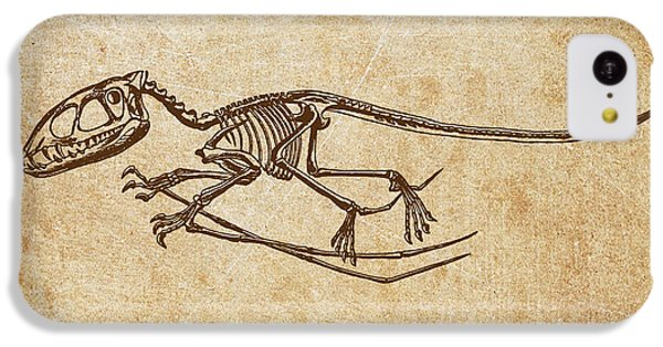 Dinosaur Pterodactylus IPhone 5c Case by Aged Pixel
