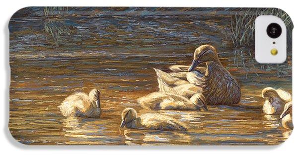 Ducks IPhone 5c Case by Lucie Bilodeau