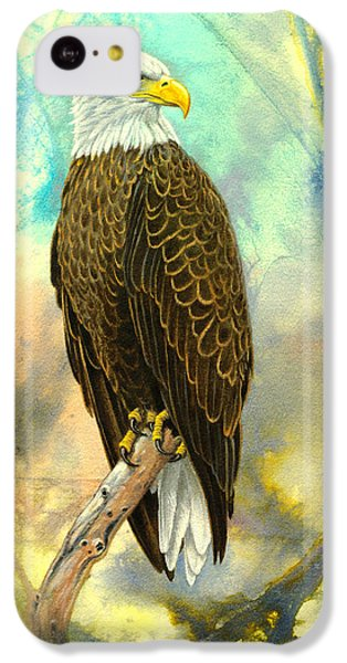 Eagle In Abstract IPhone 5c Case by Paul Krapf