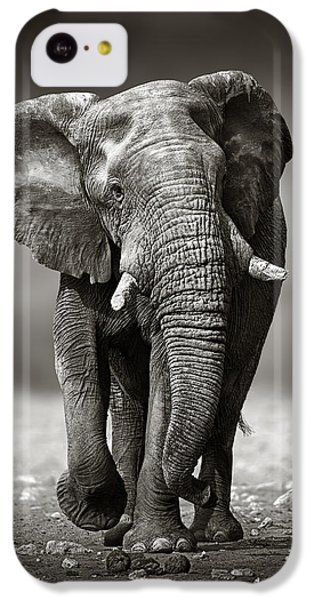 Elephant Approach From The Front IPhone 5c Case by Johan Swanepoel